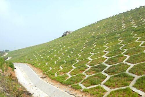 清远植草护坡草籽袋什么地方有卖的