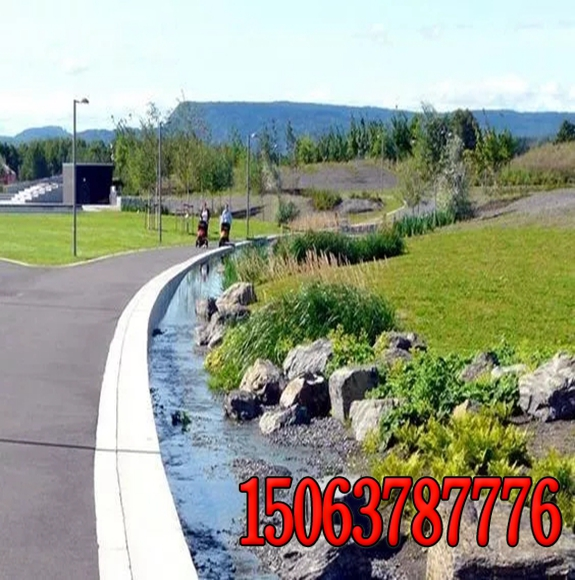 公路边坡护坡绿化草种价格