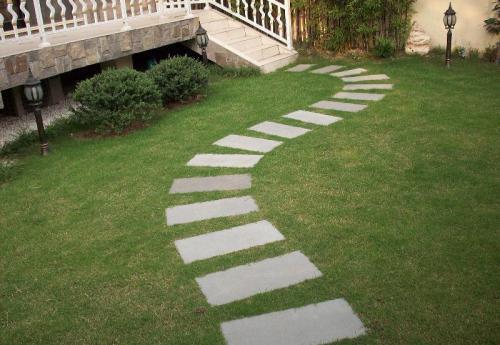 草坪砖里栽种什么草坪好呢