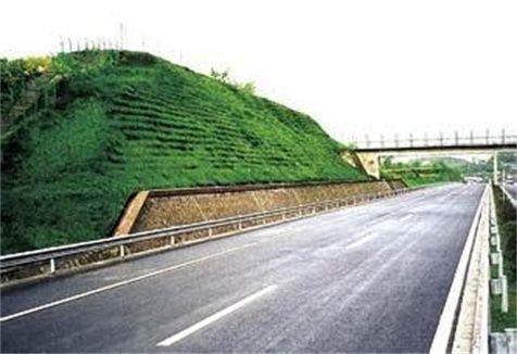 高速公路护坡用什么草种好