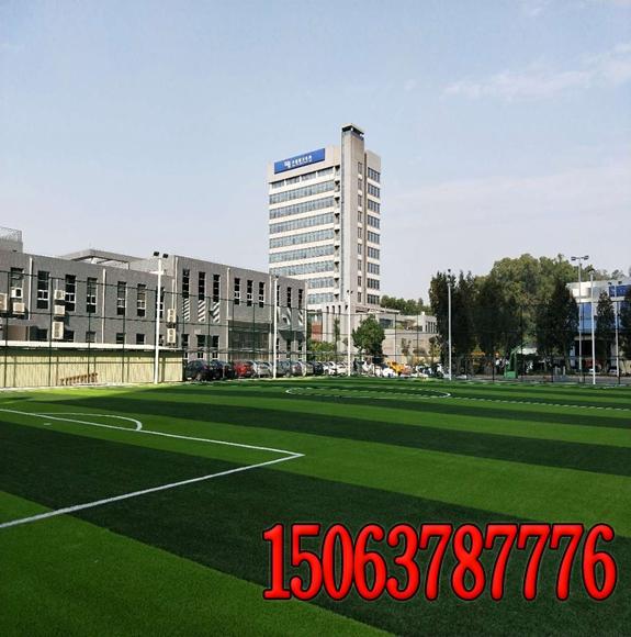 辽宁高铁边坡绿化
